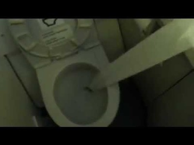 ¿Que pasa si ponemos la puntita del rollo de papel higienico en el vater del avion?