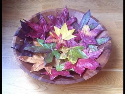 Cómo conservar hojas otoñales para adornar