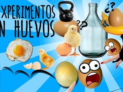 8 experimentos con huevos para niños (recopilación)