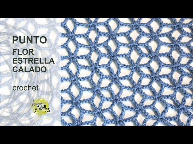 Tutorial Punto Flor Estrellada Calado Crochet o Ganchillo en Español