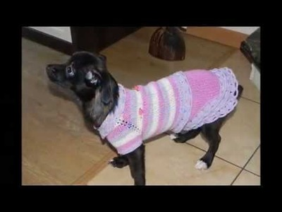 Ropa para perros en crochet o  ganchillo