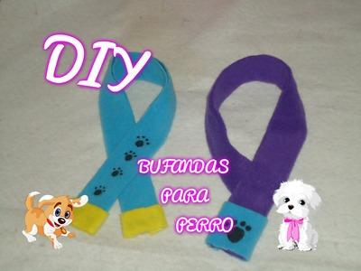 Diy, bufandas para perro