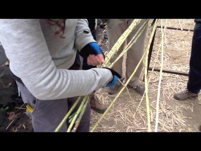 Taller de construcción con cañas
