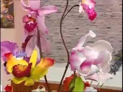 118 - Bienvenidas TV - Programa del 05 de Septiembre de 2012