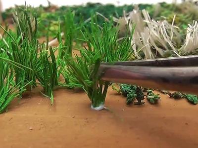 Miniature Grasses - Pastos Miniaturas