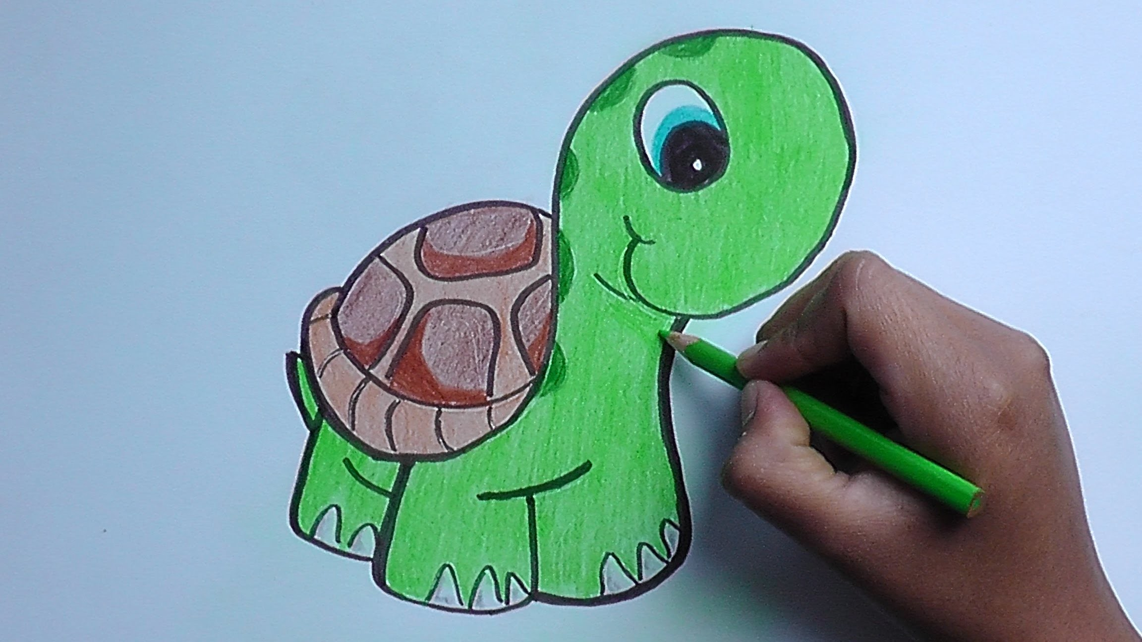 Dibujando y pintando a una tortuga - drawing and painting a turtle