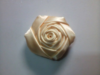 Botón de Rosa - Rosa Parada