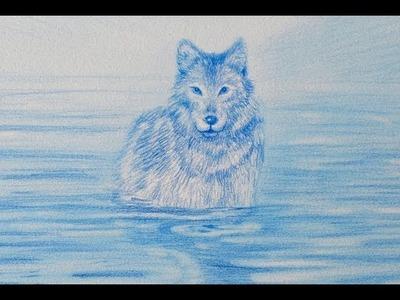 Cómo dibujar un lobo - Arte Divierte.
