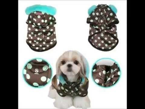 Como hacer ropa para perro, moda canina.