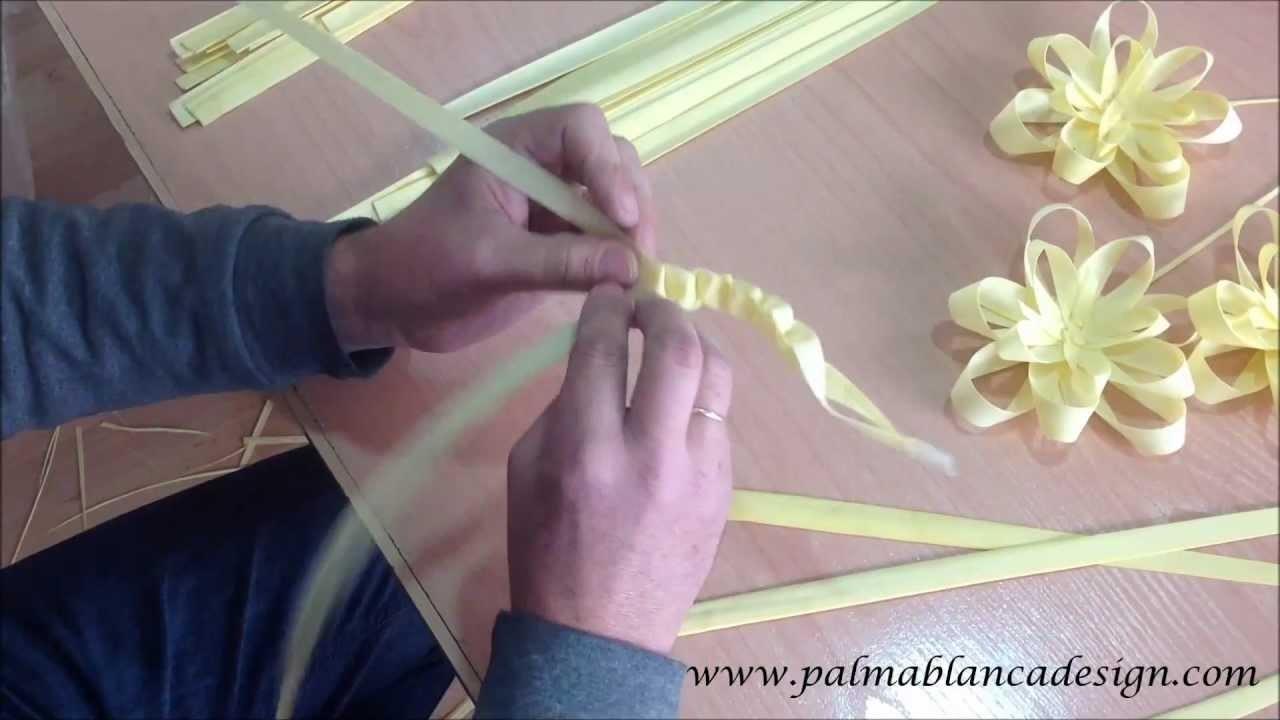 Aprende a hacer un gusanito de palma blanca con palmablancadesign.com