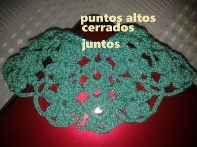 PÉTALOS CON PUNTOS ALTOS CERRADOS JUNTOS (PUNTADA DE FLORES PARA CAPA)