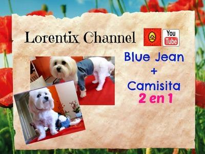 DIY Blue Jean y Camisa para Perrito FACIL  2 en 1 I Lorentix