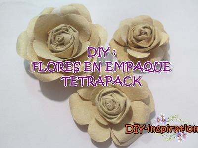 DIY FLORES RECICLANDO CAJAS DE LECHE