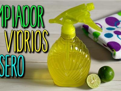 Cómo hacer Limpiador de Vidrios Casero - De Limón - Limpieza Hogar