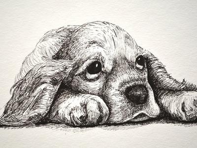 Cómo dibujar un perro cachorro y triste y tierno con marcadores- Arte Divierte