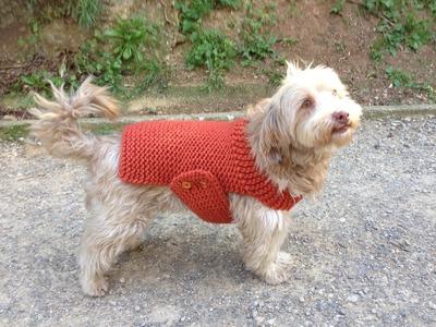 Cómo tejer en telar un jersey para perro (Tutorial DIY)