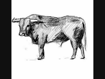 Como dibujar un toro - How to draw a bull