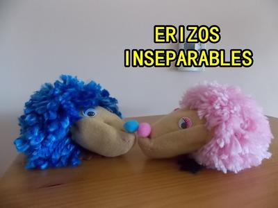 Cómo hacer Erizos inseparables DIY