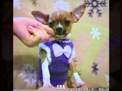 Ropa para cachorros tejidos a dos agujas
