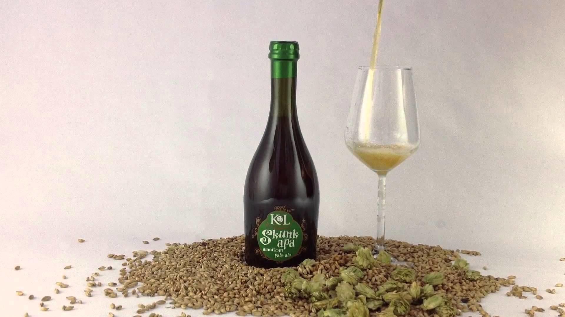 Fabrica de Cerveza Americana Pale Ale - K&L the Italian Craft Beers
