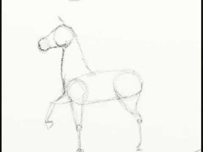 Cómo dibujar un caballo fácil paso a paso