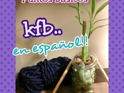 Kfb Puntos básicos dos agujas (Español)