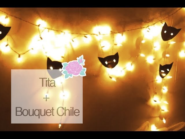 DIY: Cat Lights (Tita) | Bouquet Chile