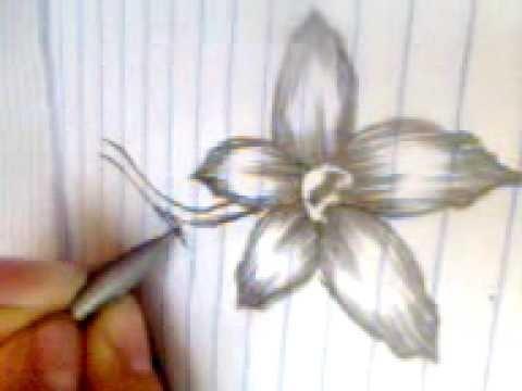 Dibuja una flor