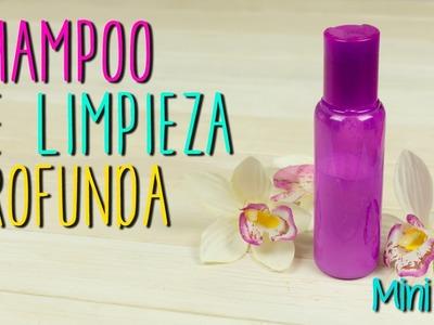 Mini Tip #45 Shampoo de Limpieza Profunda - DIY