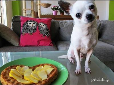Pastel para perros casero ♥ Torta para perros receta zanahoria y manzana, Fácil!