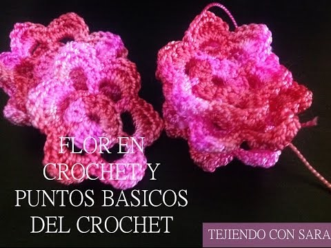 Flor en crochet y puntos básicos del crochet