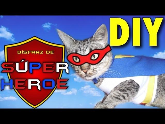 #3 DIY Disfraz de Super Héroe para gato