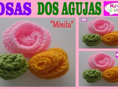"""Rosa, Flor Botón a DosAgujas """"Minita"""" Aplicación por Maricita Colours"""