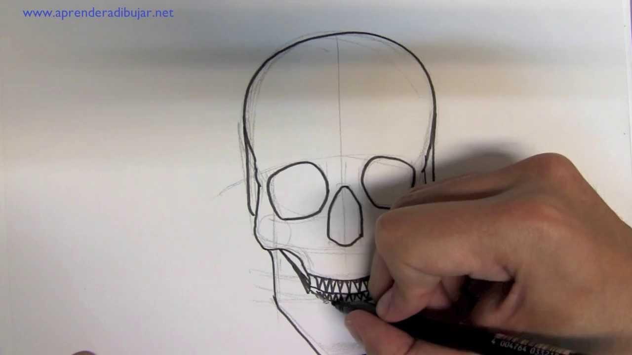 Como dibujar una calavera paso a paso - Pasos para pintar una pared ...