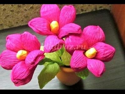 Flores de papel crepé - Regalo para cumpleaños o dia de madre