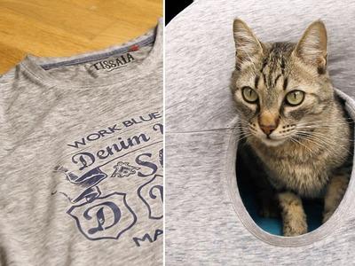 Casa para gatos con una camiseta y dos perchas | MASCOTAS