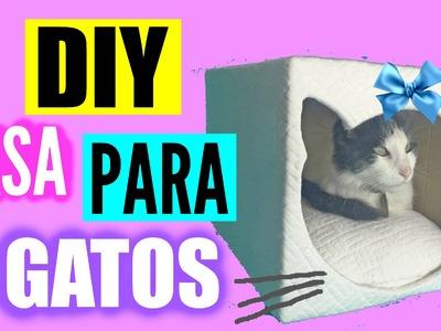 DIY casita para gatos