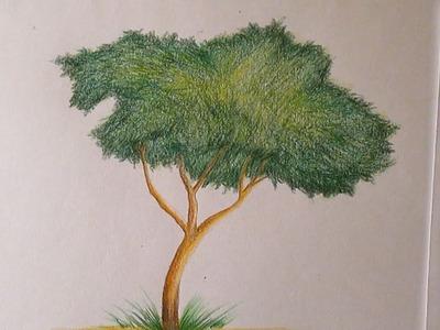 Cómo dibujar un árbol con lápices de colores paso a paso, dibujo de un árbol