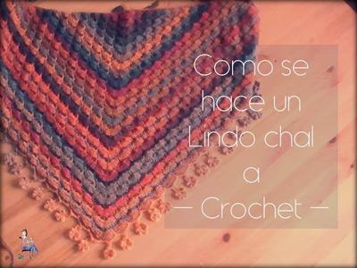 Como se hace un sencillo chal a crochet (zurdo)