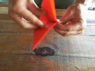 Origami.  ( nido di mariposa en puerto escondido)