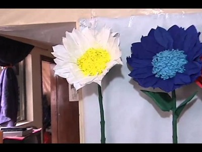Flores Gigantes - Citytv