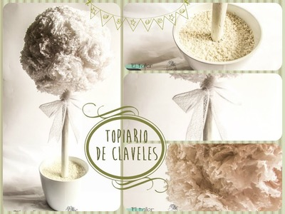 DIY: Topiario de claveles o árbol decorativo para bodas y eventos