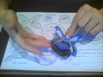 Leccion 2   PARTE 1   pasar moldes a fomi