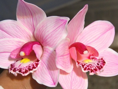 Pintar flores Porcelana fria: Orquidea cymbidium rosada 3ra parte
