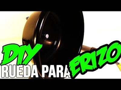 ZOLEK09 | VIDEOTUTORIAL | Rueda para erizos | DIY A wheel for hedgehogs