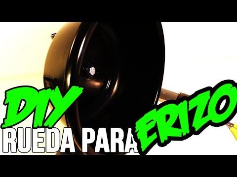 ZOLEK09   VIDEOTUTORIAL   Rueda para erizos   DIY A wheel for hedgehogs