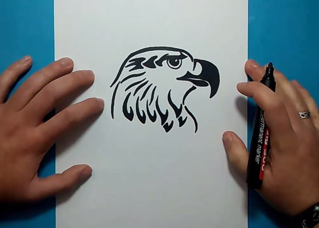 how to draw a tribal eagle