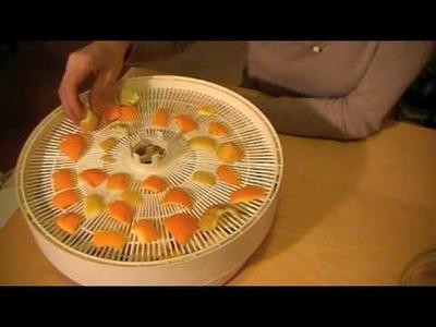 Deshidratar flores, futas,verduras con deshidratador. Dehydrating food. ecodaisy.