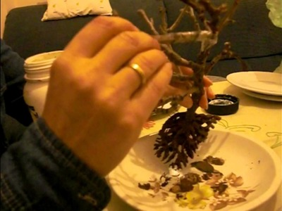 Planta en miniatura para portal de Belén