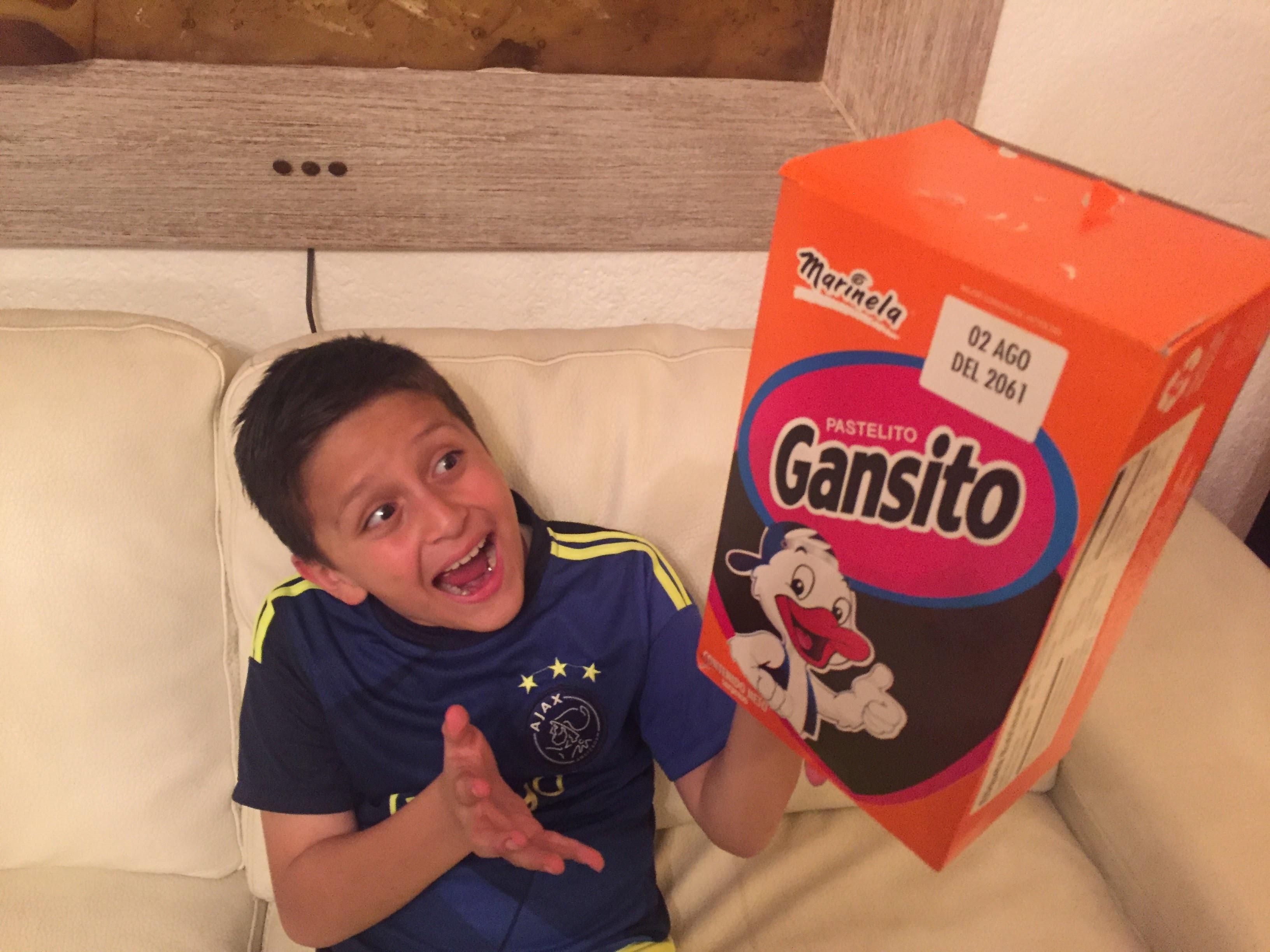 DIY Marinela Gansito Giant Cake - Como Hacer Pastel Gigante de Gansito en unos minutos.